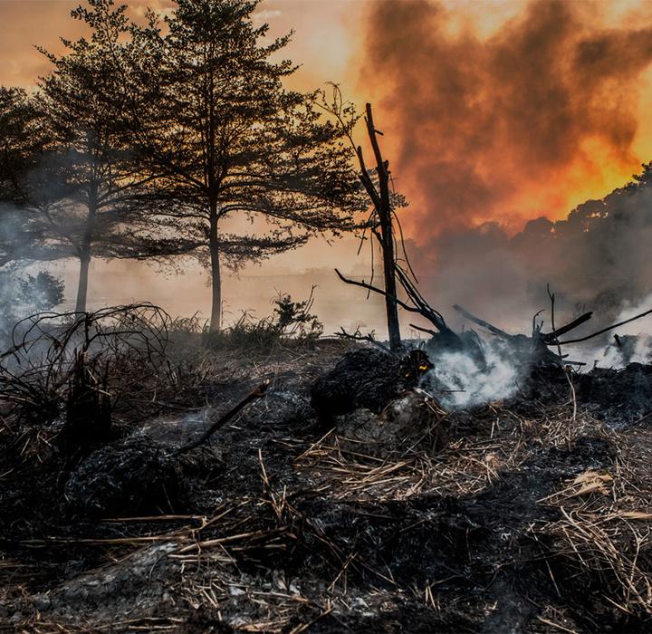 Seminário Desastres ambientais: Experiências nacionais e internacionais