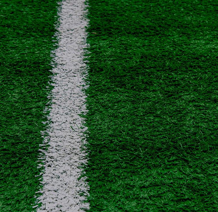 Entre a Fúria e a Loucura: análise de duas formas de torcer pelo Botafogo de Futebol e Regatas