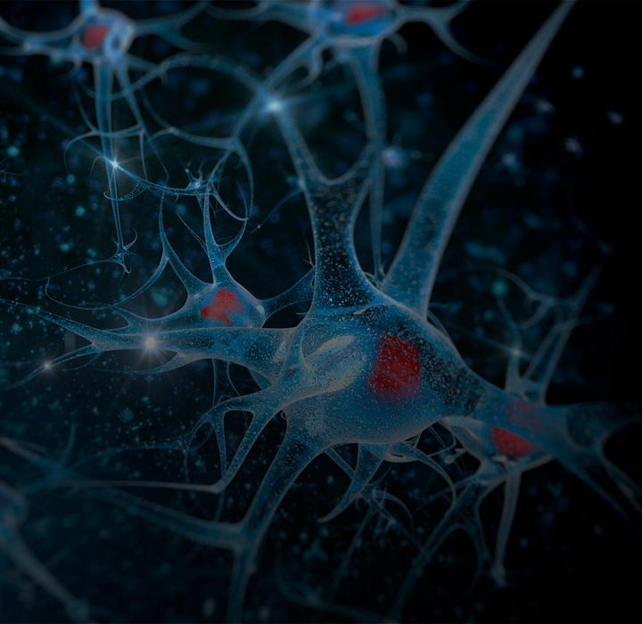 Aula Modelo   PEC - Neurobusiness