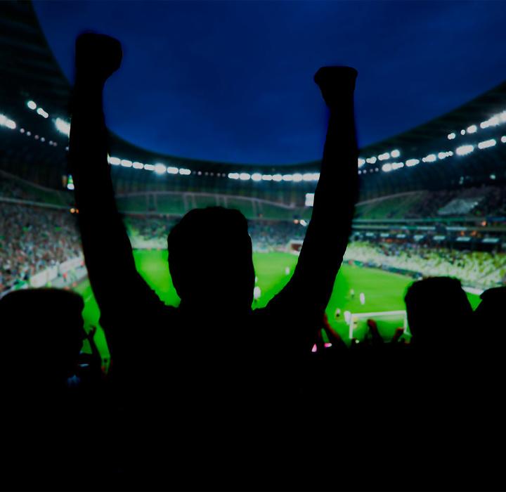 Futebol e modernismo: as charges de Fernando Pierucetti e a invenção dos bichos nos clubes mineiros