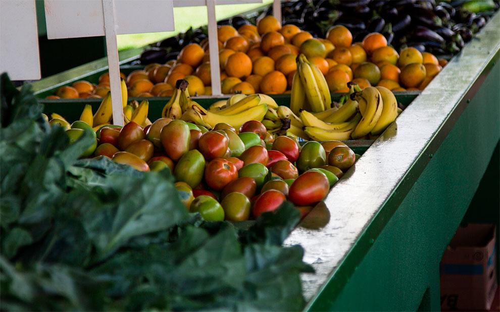 Pressão dos preços de alimentos influencia queda de Confiança do Consumidor em janeiro