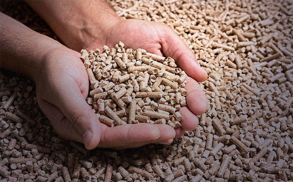 FGV Energia lança caderno de Biocombustíveis