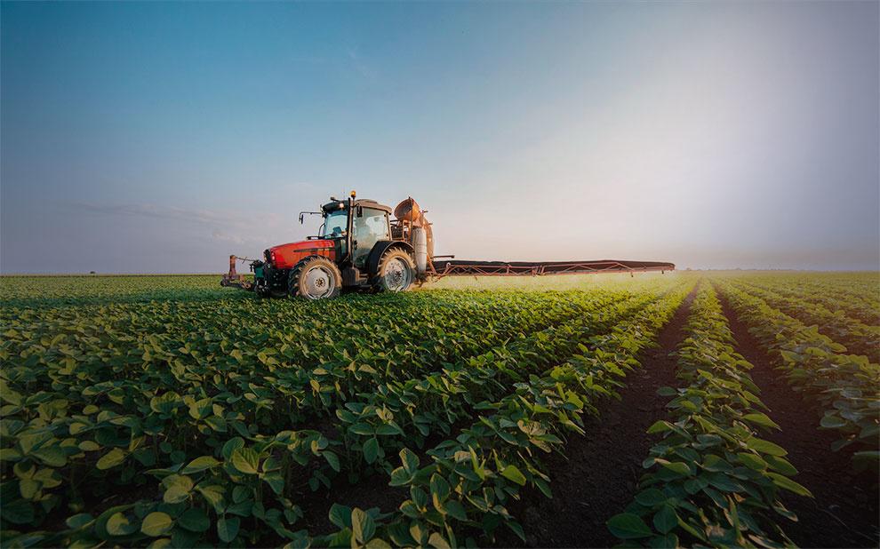 Professor é premiado por trabalho de referência na área de agricultura e alimentação