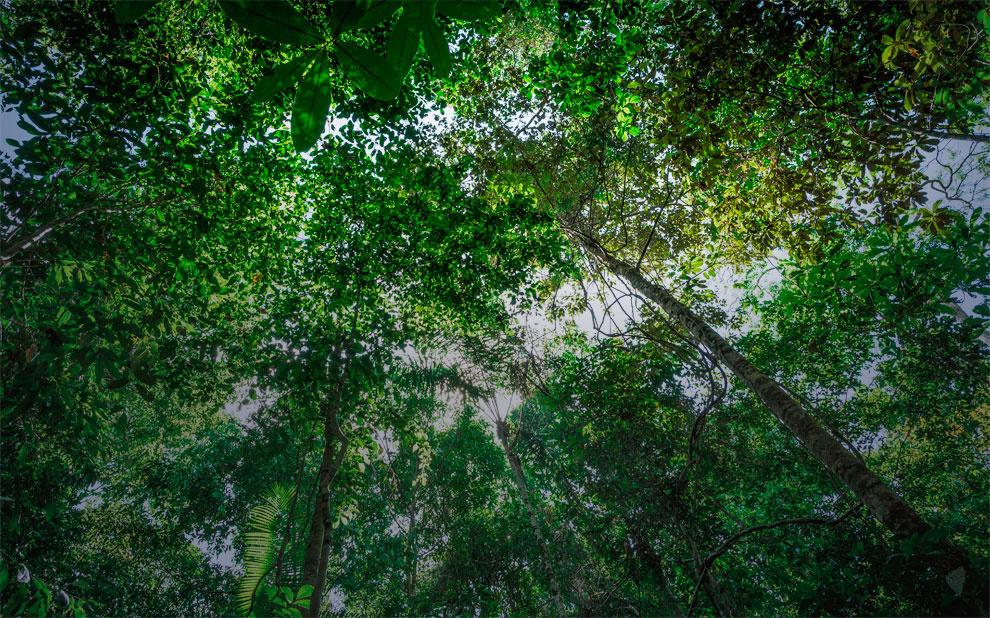 Inclusão financeira na Amazônia: professor apresenta trabalho no EGOV EPART 2017